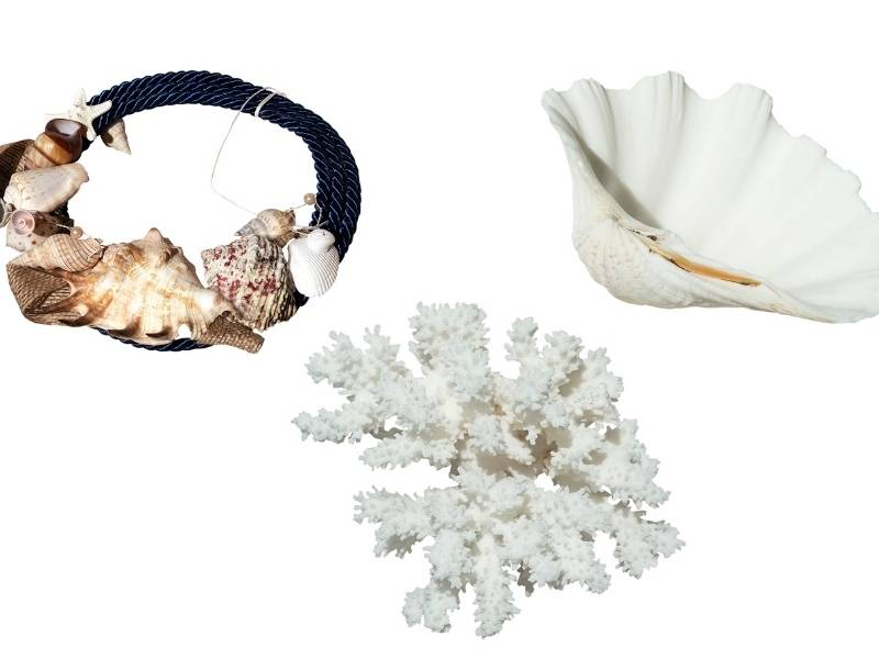 How to clean coral jewelry